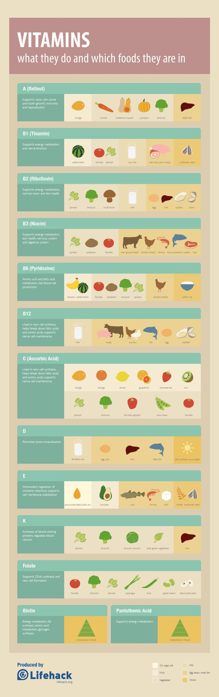 Vitamins & Foods They Are In {Infographic} - Best Infographics