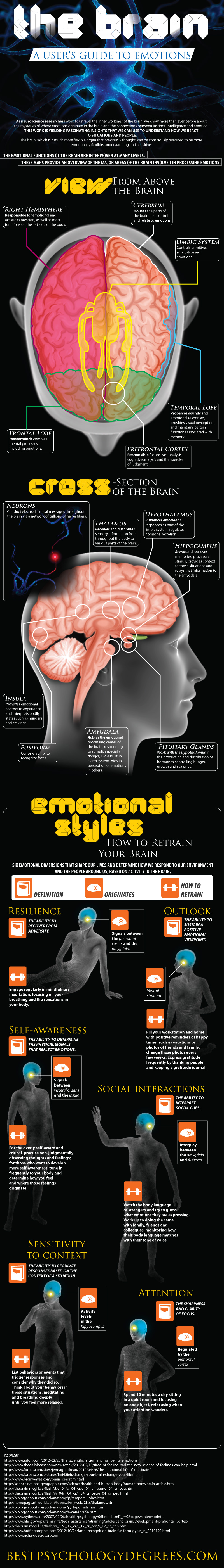 Guide To Emotions {Infographic} - Best Infographics