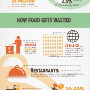Shocking U.S. Food Waste Facts & Statistics {Infographic}