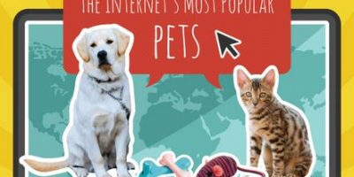 Internet's Most Popular Pets Infographic