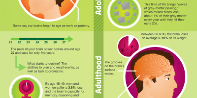 How Your Brain Ages {Infographic}