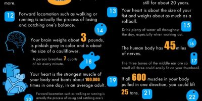 40 Facts About Fitness {infographic}