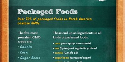 How to Avoid GMOs {Infographic}