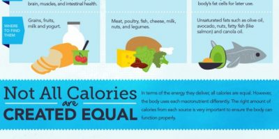 Guide to Calories Infographic