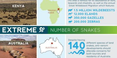 Most Extreme Destinations In the World {Infographic}