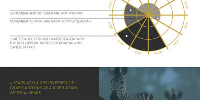 Exploring The Okavango Delta {Infographic}