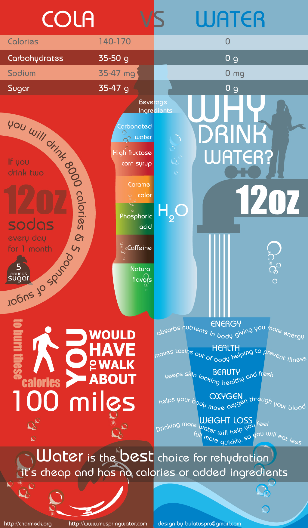 How Soda Destroys Your Body Infographic Best Infographics