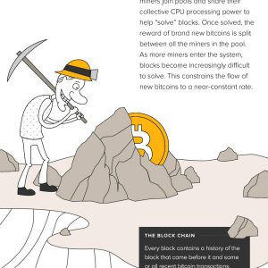 What Is BitCoin {Infographic}