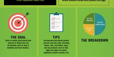 Decoding Diets: Paleo, Vegan, and More {Infographic}