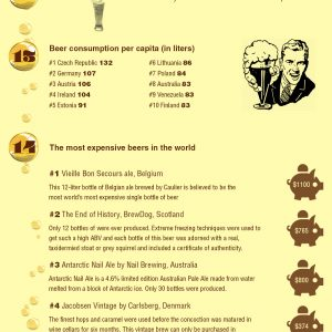 24 Facts About Beer {Infographic}