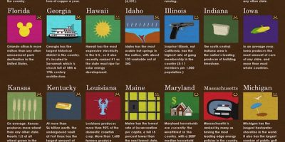 What Does Your State Do Well {Infographic}