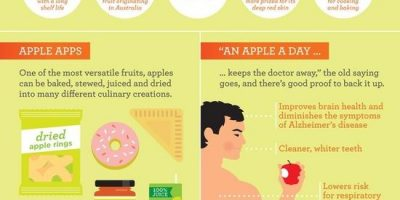 All About Apples {Infographic}