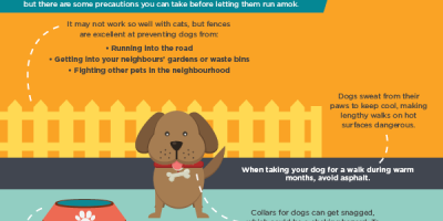 Pet Proofing Your Home {Infographic}