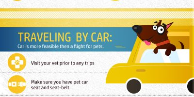 Traveling with Pets {Infographic}