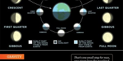 All You Need to Know About the Moon {Infographic}