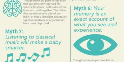 10 Myths About the Human Brain