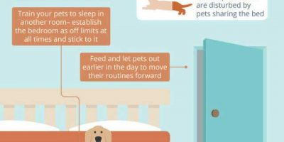 What Wakes People Up At Night {Infographic}