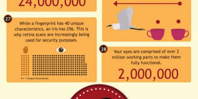 50 Facts About the Eye {Infographic}