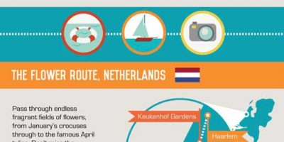 Epic Road Trips Around the World {Infographic}