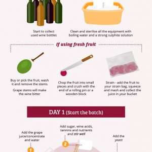 How to Make Your Own Wine {Infographic}