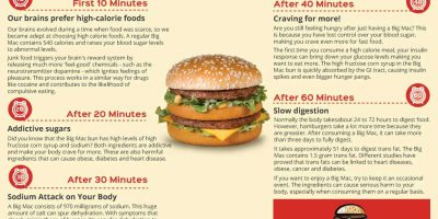 What Happens After Eating a Big Mac? {Infographic}