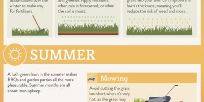 Lawn Maintenance Seasonal Cheat Sheet