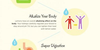 Benefits of Drinking Lemon Water {Infographic}