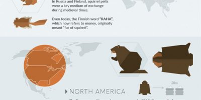 The World's Strangest Currencies Infographic