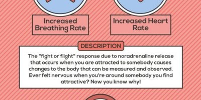 The Science of Love {Infographic}