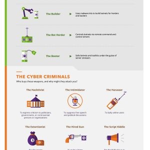 The Anatomy of a DDoS Attack {Infographic}