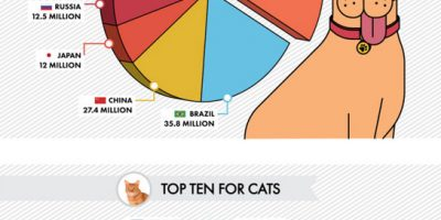 Pet Ownership Around the World {Infographic}