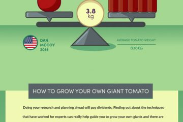 Worlds-Biggest-Vegetables-&-How-To-Grow-Them
