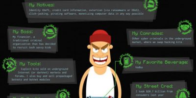 Hacker Profiles {Infographic}