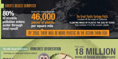 State of the Earth in 50 Years {Infographic}