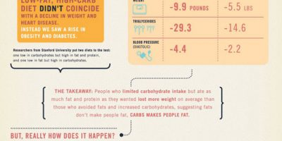 Why Eating Fat Doesn't Make You Fat {Infographic}