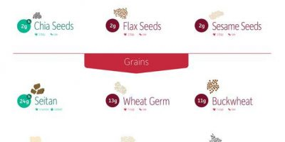 Top Sources of Plant-Based Protein {Infographic}