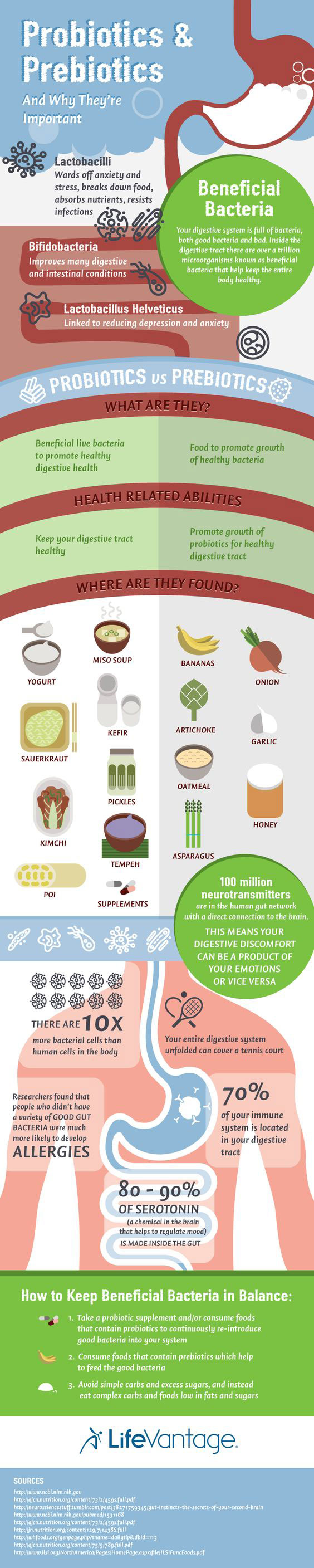 probiotics-prebiotics-infographic