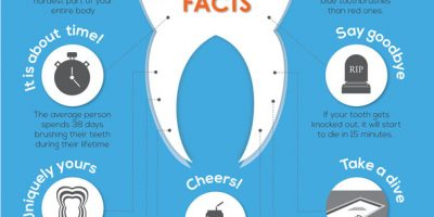10 Facts About Your Teeth Infographic