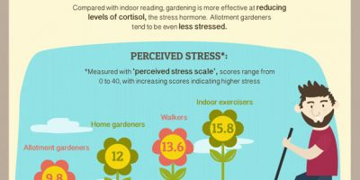 Why Gardening Is Good for You [Infographic]