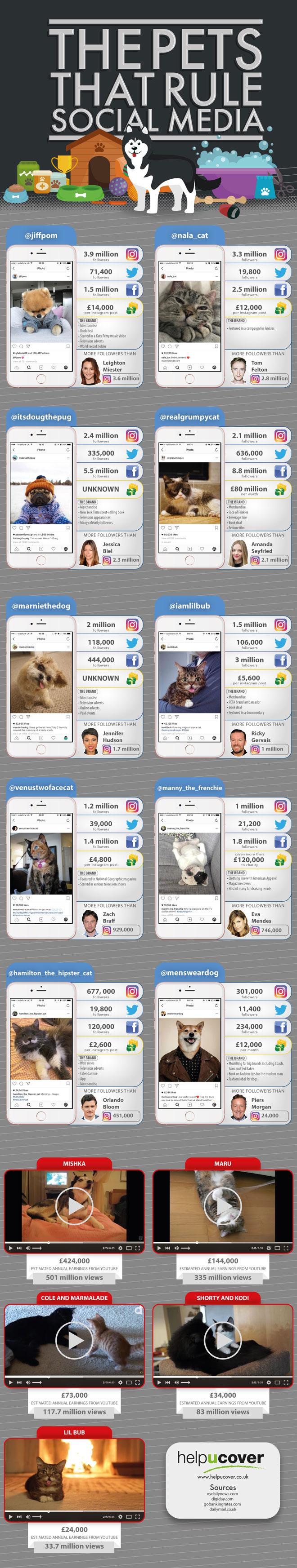 Top 10 Apps for Instant Messaging Infographic  Entrepreneur