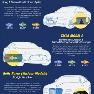 Most Ridiculous Luxury Car Extras [Infographic]