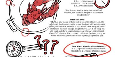 Cooking Lobster: Tips & Times [Infographic]