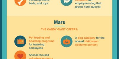 Benefits of Pets at Work [Infographic]