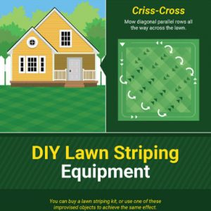 Tips for the Perfect Lawn [Infographic]