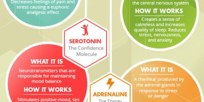 The Science Behind Happiness [Infographic]