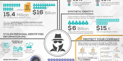 The Growing Cost of Identify Fraud [Infographic]