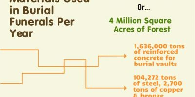 Environmental Impact of Burial Funerals [Infographic]