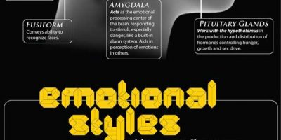 A Guide To Emotions [Infographic]