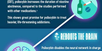 Magic Mushrooms & Their Benefits