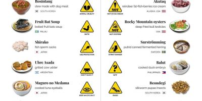20 Most Bizarre Foods Around the World